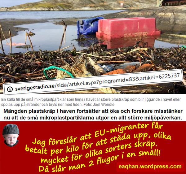 Migranter och plastskräp.jpg