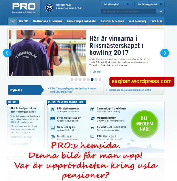 PRO hemsida start.jpg