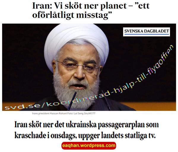 Irann sköt ned planet.jpg